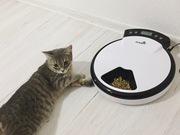 Автокормушка для кошек и собак Petwant (новая)
